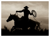Midnight Rider Prints by Barry Hart