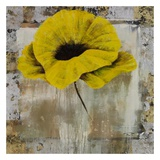 Poppy Yellow Poster by  Timo