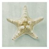 Suzanne Goodwin - Ocean Jewel III Obrazy