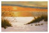 Puesta de sol estival Imágenes por Diane Romanello