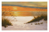 Summer Sunset Prints by Diane Romanello