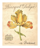 Perroquet Tulipe Prints by Constance Lael