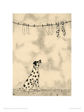 Spotty Dog And Socks Giclee Print by  JOMAC