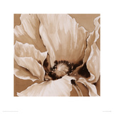 Sepia Summer II Giclee Print by Maggie Thompson
