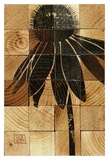 Cone Flower Wood Block Art by Suzanna Anna