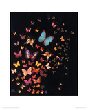 Midnight Butterflies Giclee Print by Lily Greenwood
