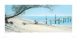 Beach Tree With Jetty Impression giclée par Alexander Slatter