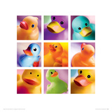 Duck Family Portraits Reproduction procédé giclée par Ian Winstanley