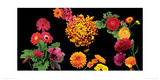 500 Flowers I Giclee Print by Roger Camp