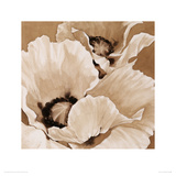 Sepia Summer I Giclee Print by Maggie Thompson