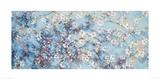 Oriental Blossom Giclee Print by Nicola Acaster