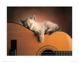 Sleeping Soundly Giclee Print by Xavier Chantrenne