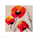 Three Poppies - Grey Giclee Print by Tibi Hegyesi