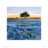 Blue Field, France Giclee Print by Lydia Bauman