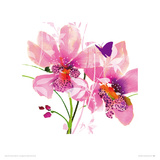 Orchid Blush Impresso gicle por Summer Thornton