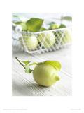 Lemons Giclee Print by Howard Shooter