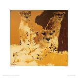 Cheetahs II Giclee Print by Wil Van Der Laan