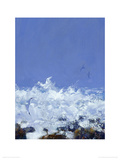 Sea, Rocks, Gulls III Giclee Print by Robert Jones