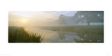 River Aln Dawn Giclee Print by Lee Frost