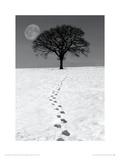 Winter Moon Giclee-trykk av Ilona Wellman