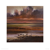 Cattle at Sunset Giclee Print by Jonathan Sanders