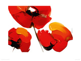 Three Poppies - White Giclee Print by Tibi Hegyesi
