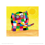 Elmer in the Sun Giclee Print by David Mckee