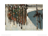 Birch Trees Giclee Print by Law Wai Hin