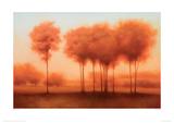 Auburn Shade Giclee Print by Darlou Gams