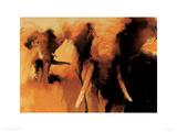African Elephants Giclee Print by Wil Van Der Laan