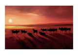 Zebu At Dusk Giclee Print by Jonathan Sanders