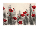 Red Poppies Giclee Print by Hans Andkjaer