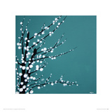 Chinese Blossom Giclee Print by Simon Fairless