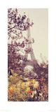 Springtime in Paris Reproduction procédé giclée par Liz Rusby