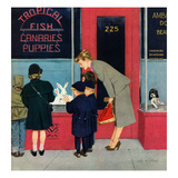 """Bunnies for Sale"", April 12, 1952 Giclee Print by M. Coburn Whitmore"
