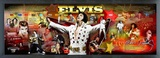 Elvis Presley - Framed Elvis Photoramic (Panoramic Timeline Photo) Framed Memorabilia