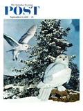 """Snowy Owls"" Saturday Evening Post Cover, September 14, 1957 Giclee Print by D. Bleitz"