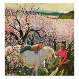 """Apple Blossom Time"", May 6, 1950 Giclee Print by John Clymer"