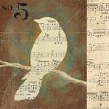 D. Salusti - Bird Silhouettes II - Reprodüksiyon