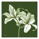 Twin Lilies on Green Print by Albert Koetsier