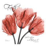 Royal Red Tulip, Faith Affiche par Albert Koetsier
