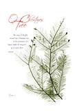 Christmas Evergreen Prints by Albert Koetsier