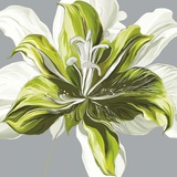 Spring Greens I Poster by Sally Scaffardi