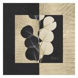 Eucalyptus on Squares Poster af Albert Koetsier