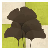 Ginkgo Brown Quad on Green Prints by Albert Koetsier