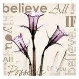 Believe, Violet Daffodils Prints by Albert Koetsier