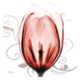 Happy Tulip in Red Prints by Albert Koetsier
