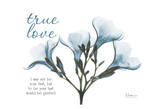 Blue Oleander, True Love Print by Albert Koetsier