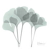 Ginkgo in Pale Blue Art by Albert Koetsier