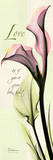 Love, Pink Calla Lily Art by Albert Koetsier